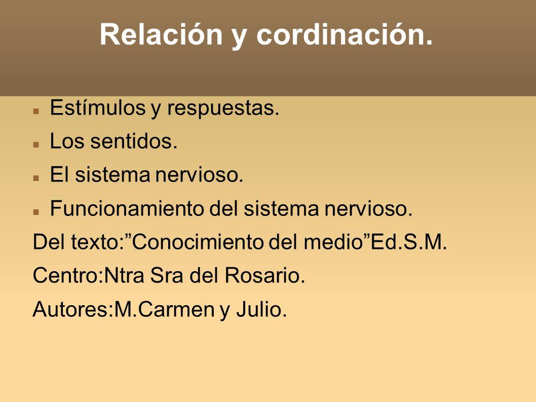 Relación y cordinación.Estímulos y respuestas. Los sentidos.