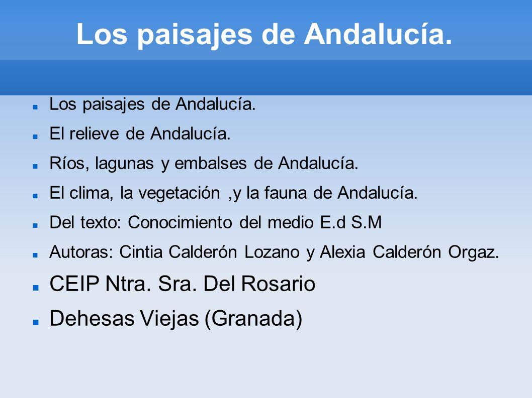 Los paisajes de Andalucía. El relieve de Andalucía. Ríos, lagunas y embalses de Andalucía. El clima, la vegetación,y la fauna de Andalucía. Del texto: