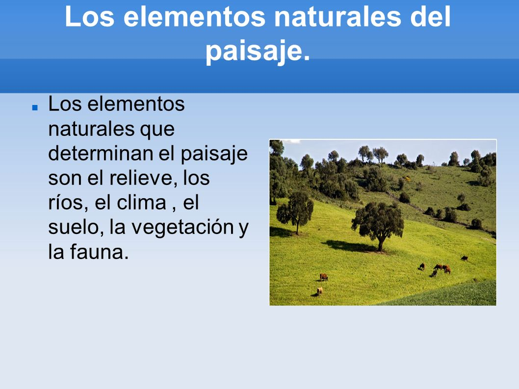 Los elementos naturales del paisaje.