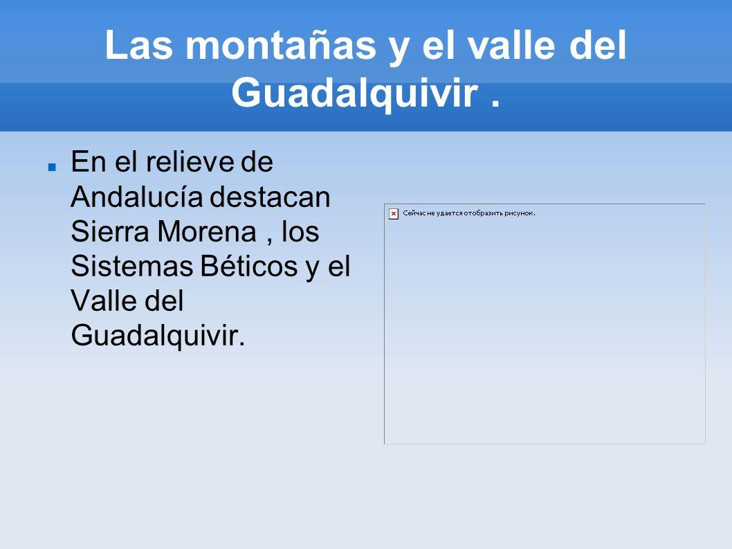 Las montañas y el valle del Guadalquivir. En el relieve de Andalucía destacan Sierra Morena, los Sistemas Béticos y el Valle del Guadalquivir.