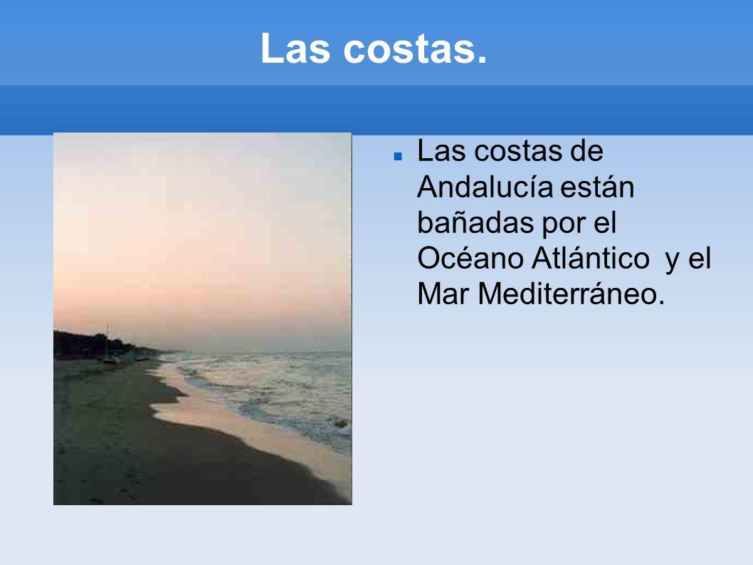 Las costas. Las costas de Andalucía están bañadas por el Océano Atlántico y el Mar Mediterráneo.