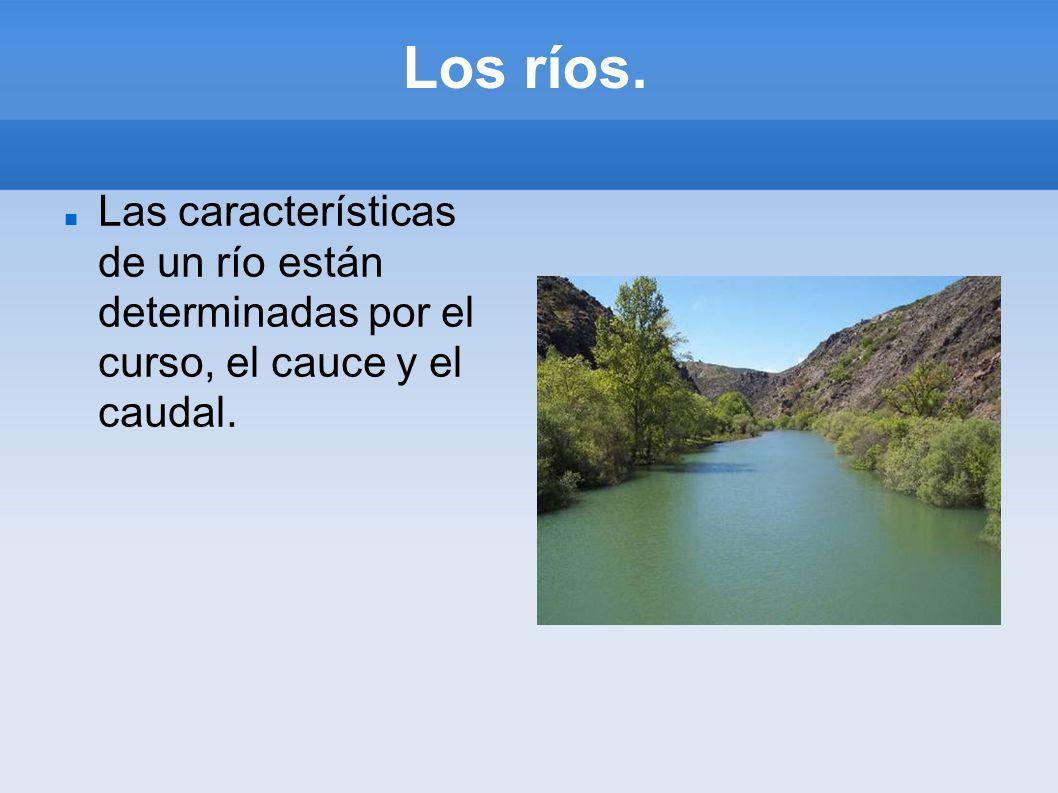 Los ríos. Las características de un río están determinadas por el curso, el cauce y el caudal.