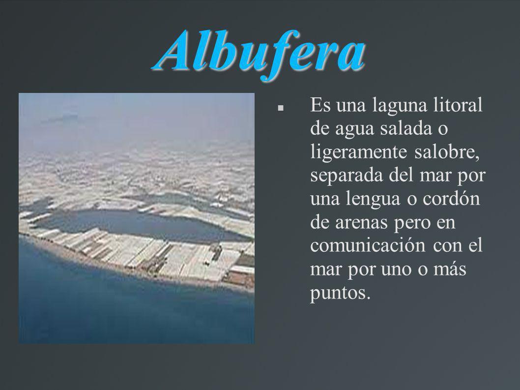 Albufera Es una laguna litoral de agua salada o ligeramente salobre, separada del mar por una lengua o cordón de arenas pero en comunicación con el ma