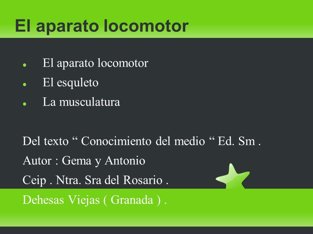 El aparato locomotor El esquleto La musculatura Del texto Conocimiento del medio Ed.