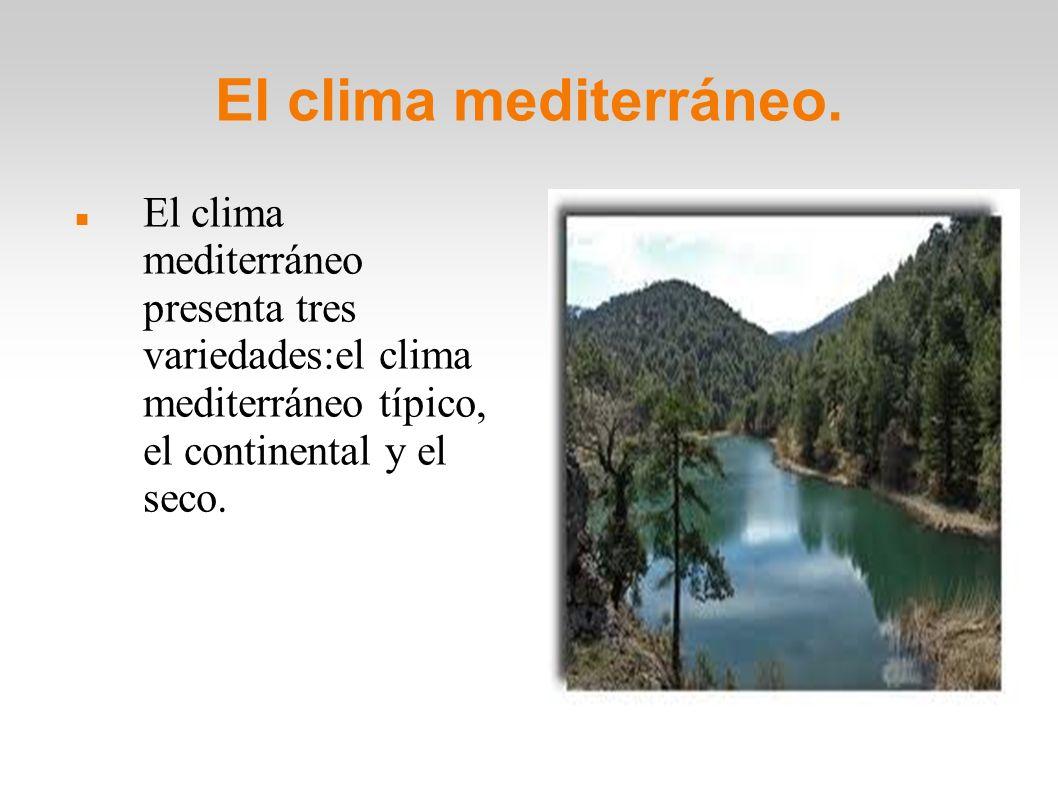 El clima mediterráneo. El clima mediterráneo presenta tres variedades:el clima mediterráneo típico, el continental y el seco.