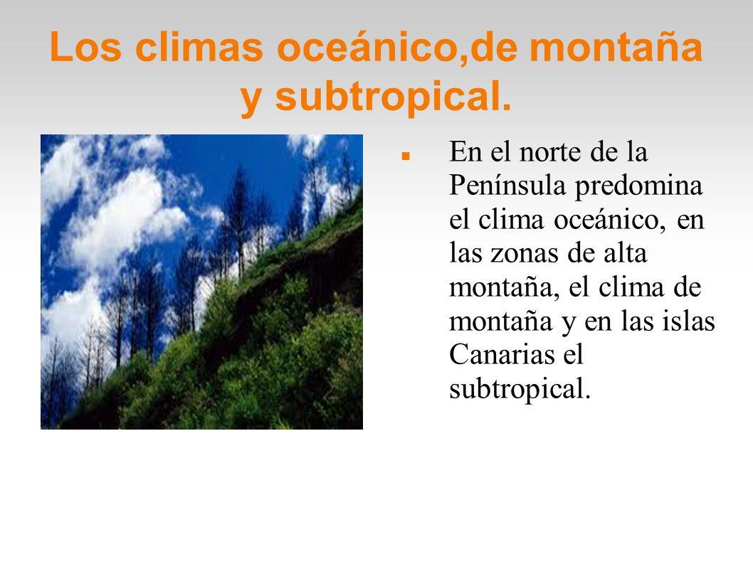 Los climas oceánico,de montaña y subtropical. En el norte de la Península predomina el clima oceánico, en las zonas de alta montaña, el clima de monta