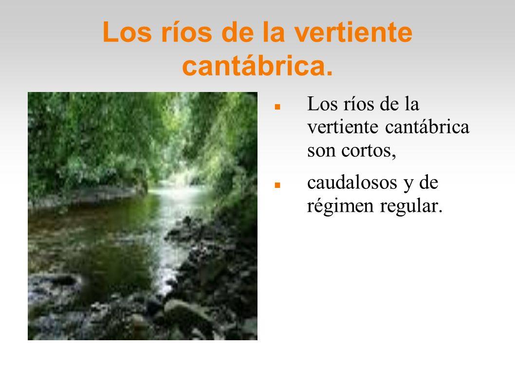 Los ríos de la vertiente cantábrica. Los ríos de la vertiente cantábrica son cortos, caudalosos y de régimen regular.