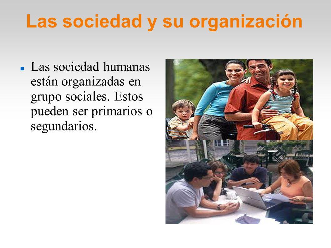 Las sociedad y su organización Las sociedad humanas están organizadas en grupo sociales. Estos pueden ser primarios o segundarios.