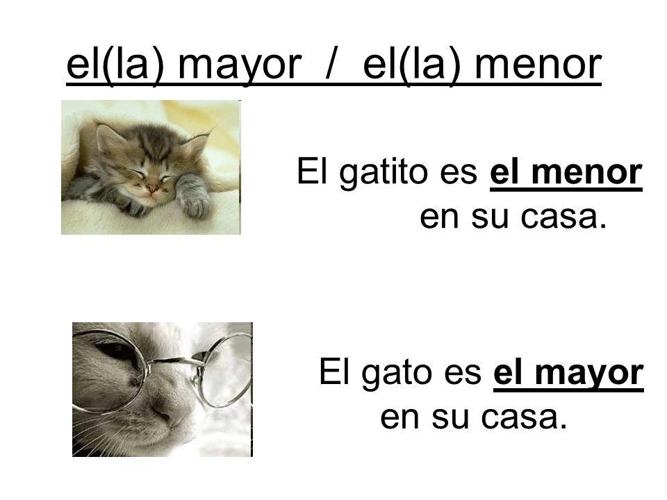 el(la) mayor / el(la) menor El gatito es el menor en su casa. El gato es el mayor en su casa.