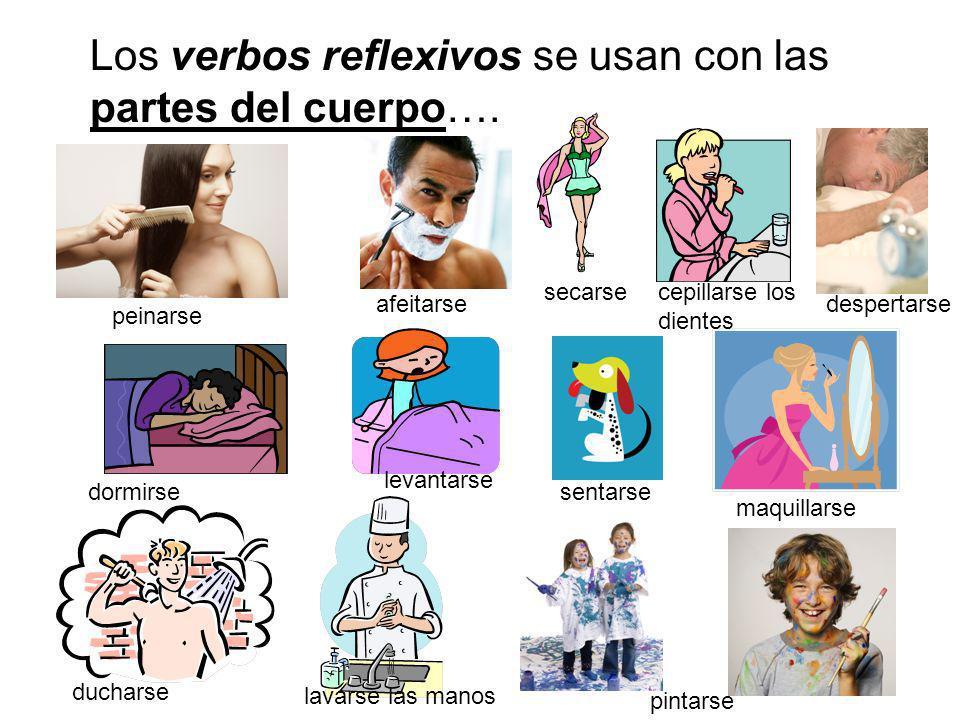 Los verbos reflexivos se usan con las partes del cuerpo…. peinarse afeitarse secarse dormirse ducharse levantarse sentarse lavarse las manos pintarse