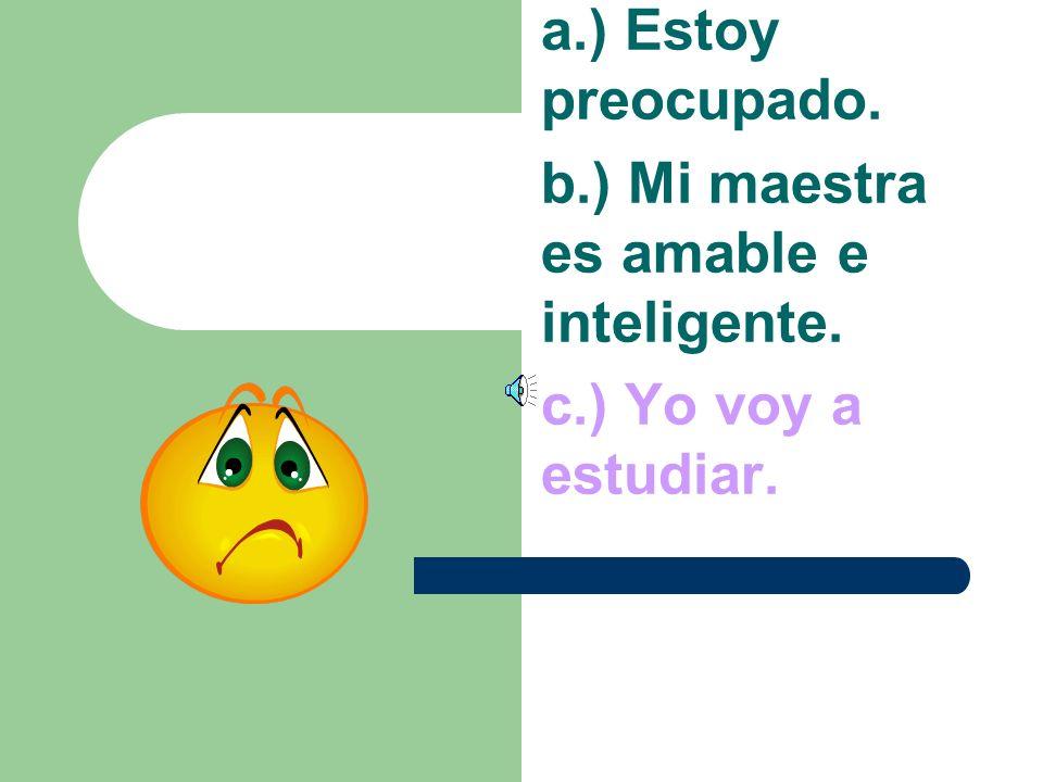 a.) Estoy preocupado. b.) Mi maestra es amable e inteligente. c.) Yo voy a estudio.