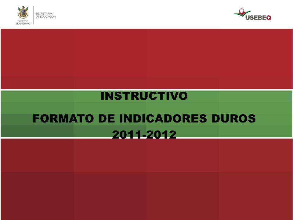 INSTRUCTIVO FORMATO DE INDICADORES DUROS 2011-2012