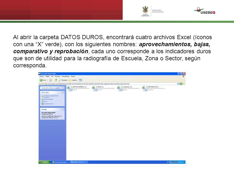 Al abrir la carpeta DATOS DUROS, encontrará cuatro archivos Excel (íconos con una X verde), con los siguientes nombres: aprovechamientos, bajas, compa