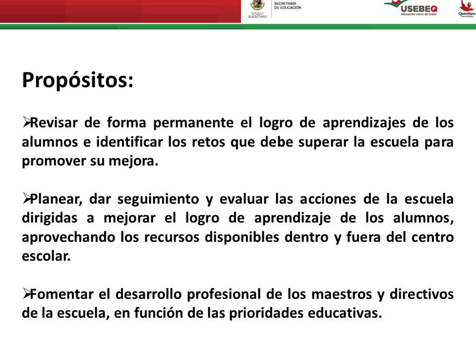 Consejo Técnico Escolar 2013-2014 Para la fase intensiva de los Consejos Técnicos Escolares, previa al inicio del ciclo escolar 2013–2014, la propuesta se organiza en cinco sesiones de trabajo.