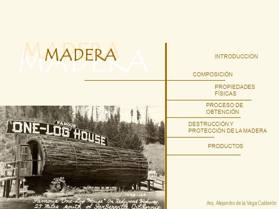 MADERA INTRODUCCION COMPOSICIÓN PROPIEDADES FÍSICAS PROCESO DE OBTENCIÓN Arq. Alejandro de la Vega Calderón PRODUCTOS DESTRUCCIÓN Y PROTECCIÓN DE LA M
