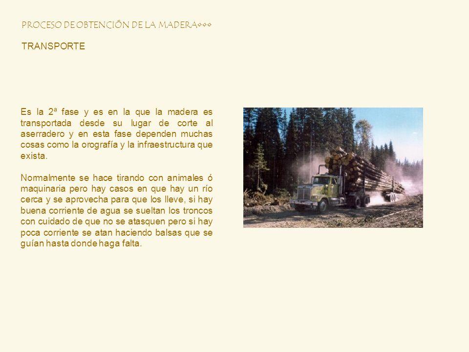 PROCESO DE OBTENCIÓN DE LA MADERA TRANSPORTE Es la 2ª fase y es en la que la madera es transportada desde su lugar de corte al aserradero y en esta fa