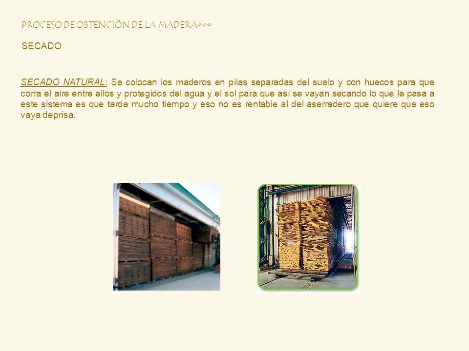 PROCESO DE OBTENCIÓN DE LA MADERA SECADO SECADO NATURAL: Se colocan los maderos en pilas separadas del suelo y con huecos para que corra el aire entre