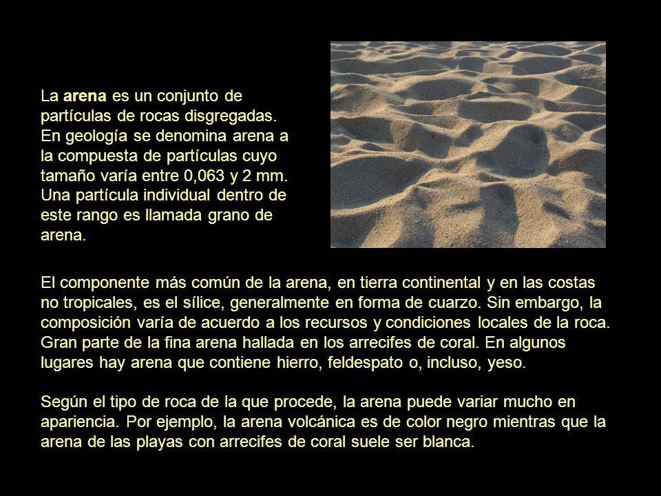 El componente más común de la arena, en tierra continental y en las costas no tropicales, es el sílice, generalmente en forma de cuarzo. Sin embargo,
