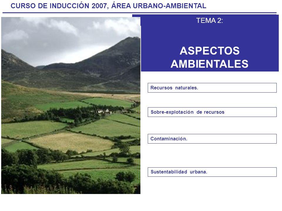 CURSO DE INDUCCIÓN 2007, ÁREA URBANO-AMBIENTAL TEMA 2 ASPECTOS AMBIENTALES TEMA 2: ASPECTOS AMBIENTALES Recursos naturales. Sobre-explotación de recur