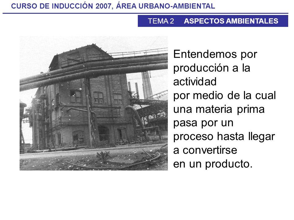 CURSO DE INDUCCIÓN 2007, ÁREA URBANO-AMBIENTAL TEMA 2 ASPECTOS AMBIENTALES Entendemos por producción a la actividad por medio de la cual una materia p