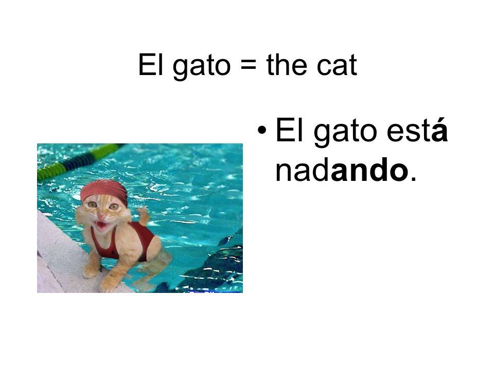 El mono = the monkey