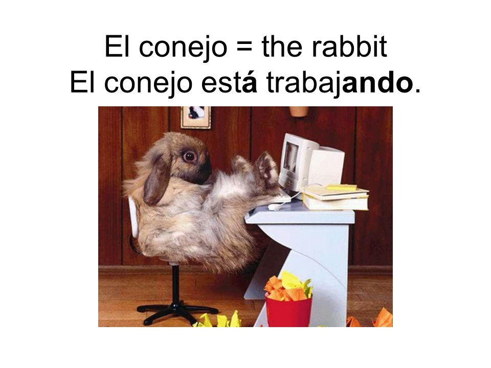 El conejo = the rabbit El conejo está trabajando.
