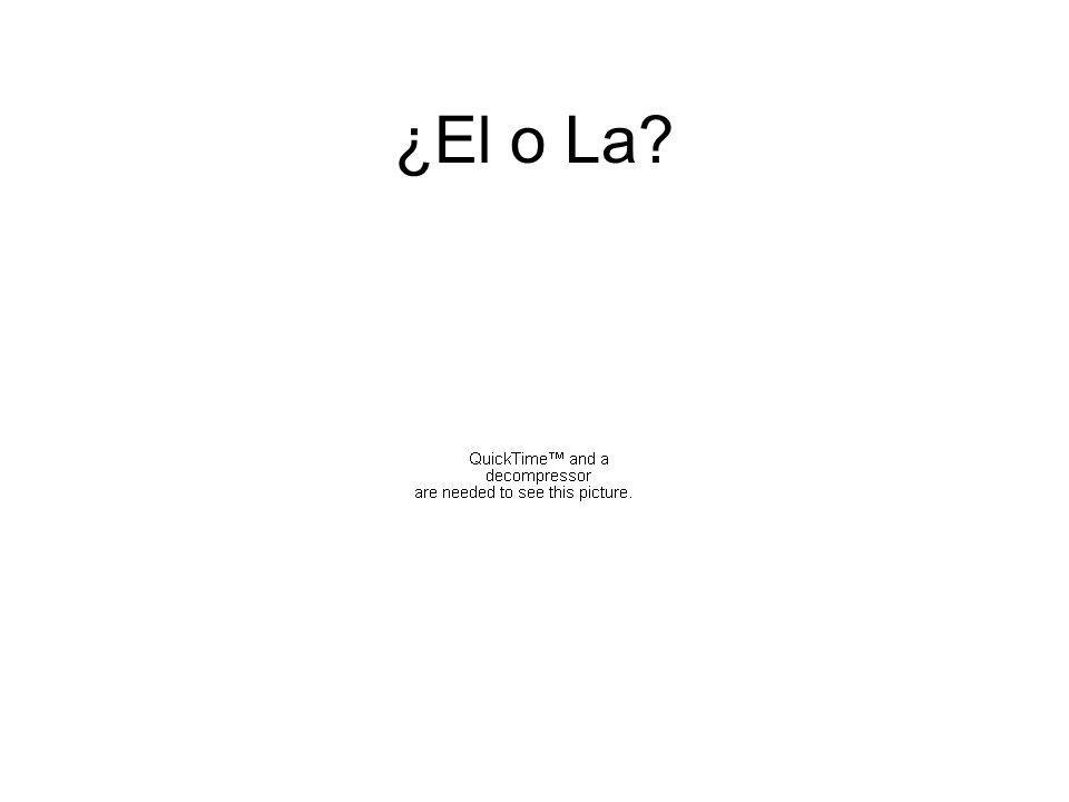 ¿El o La?