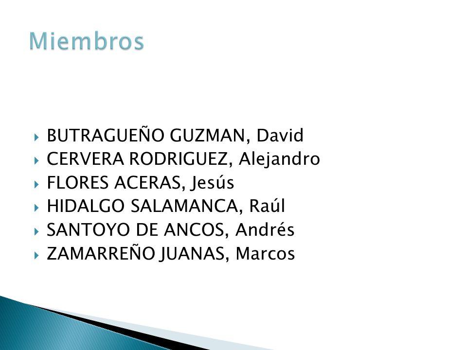 BUTRAGUEÑO GUZMAN, David CERVERA RODRIGUEZ, Alejandro FLORES ACERAS, Jesús HIDALGO SALAMANCA, Raúl SANTOYO DE ANCOS, Andrés ZAMARREÑO JUANAS, Marcos