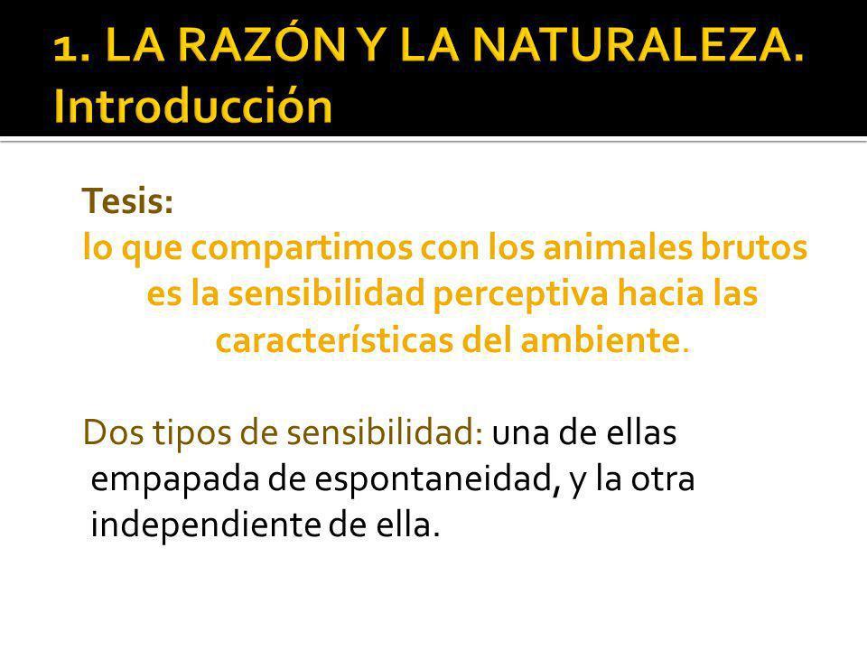 Tesis: lo que compartimos con los animales brutos es la sensibilidad perceptiva hacia las características del ambiente.