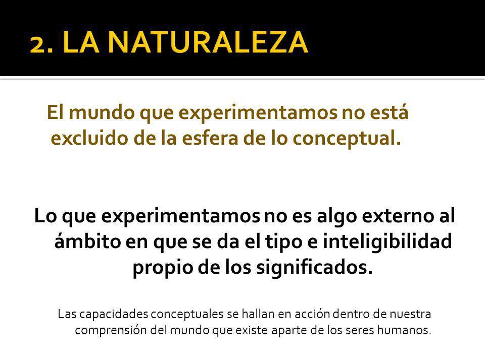 El mundo que experimentamos no está excluido de la esfera de lo conceptual.