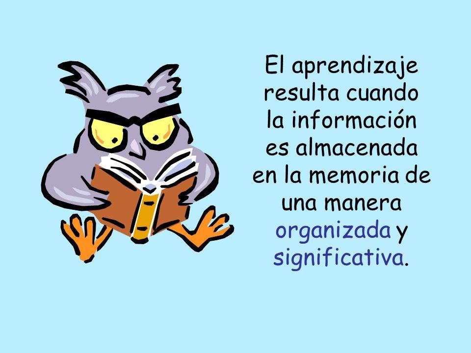 Codifican Transforman Ensayan Almacenan Localizan La Información
