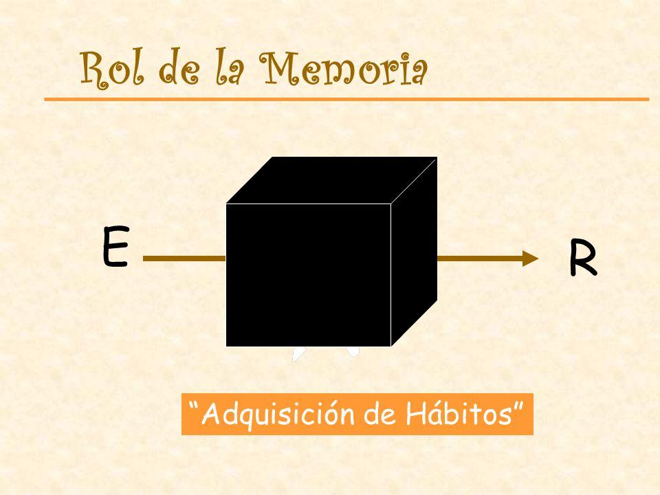En las Teorías Cognitivas el estudiante es visto como un participante activo del proceso de aprendizaje.