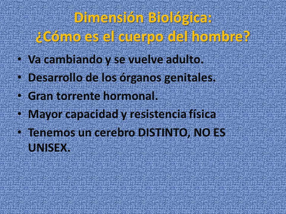 Dimensión Biológica: ¿Cómo es el cuerpo del hombre? Va cambiando y se vuelve adulto. Desarrollo de los órganos genitales. Gran torrente hormonal. Mayo