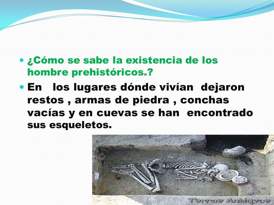 ¿Cómo se sabe la existencia de los hombre prehistóricos.? En los lugares dónde vivían dejaron restos, armas de piedra, conchas vacías y en cuevas se h