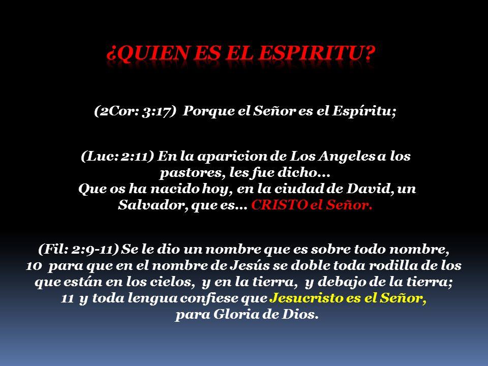 Es imposible que el Espiritu Santo habite en los vasos de deshonra.