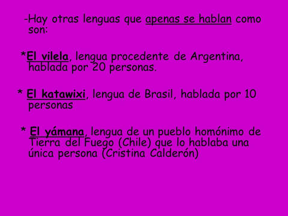 -Hay otras lenguas que apenas se hablan como son: *El vilela, lengua procedente de Argentina, hablada por 20 personas. * El katawixi, lengua de Brasil