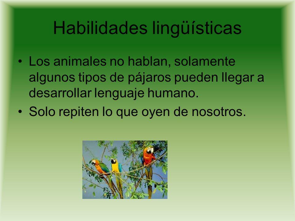 Habilidades lingüísticas Los animales no hablan, solamente algunos tipos de pájaros pueden llegar a desarrollar lenguaje humano.