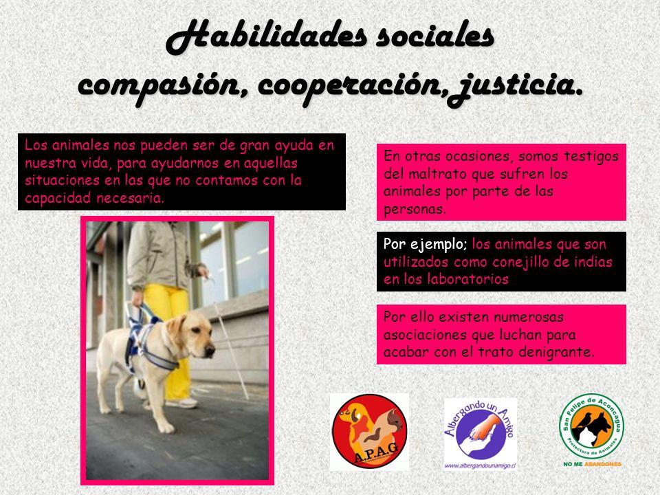 Habilidades sociales compasión, cooperación, justicia. Los animales nos pueden ser de gran ayuda en nuestra vida, para ayudarnos en aquellas situacion