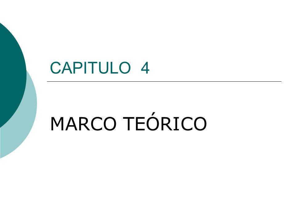 CAPITULO 4 MARCO TEÓRICO