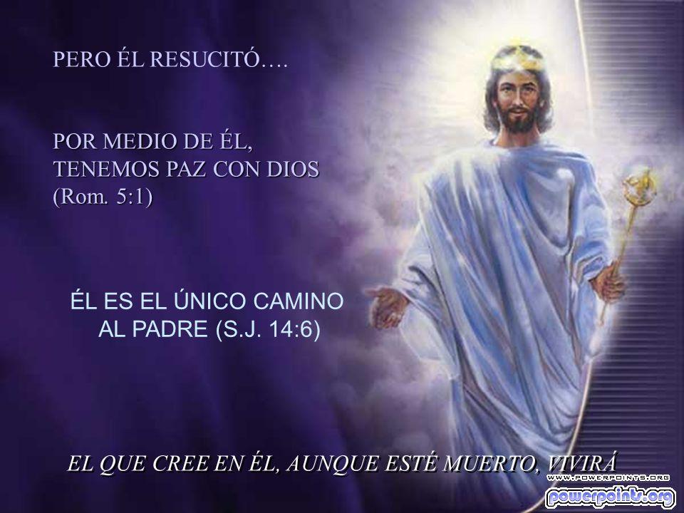 Por medio de su Sangre, derramada en la Cruz, ha logrado la Reconciliación del Hombre con DIOS EL VERBO DE DIOS