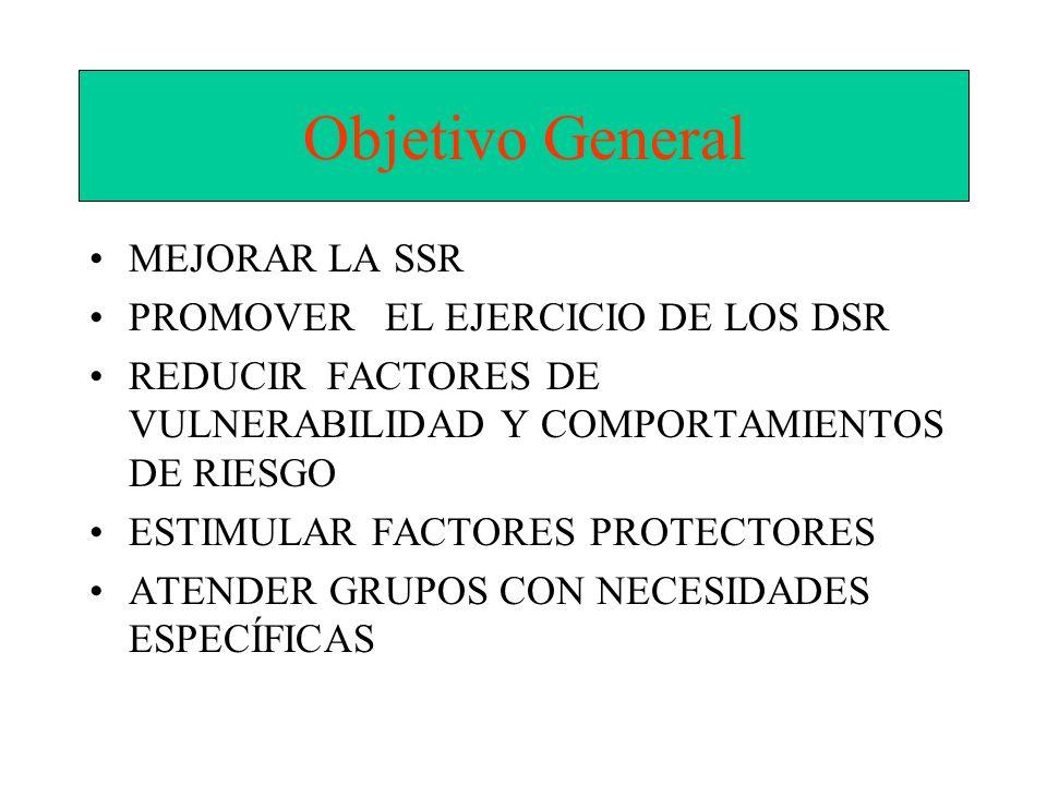 Objetivo General MEJORAR LA SSR PROMOVER EL EJERCICIO DE LOS DSR REDUCIR FACTORES DE VULNERABILIDAD Y COMPORTAMIENTOS DE RIESGO ESTIMULAR FACTORES PRO