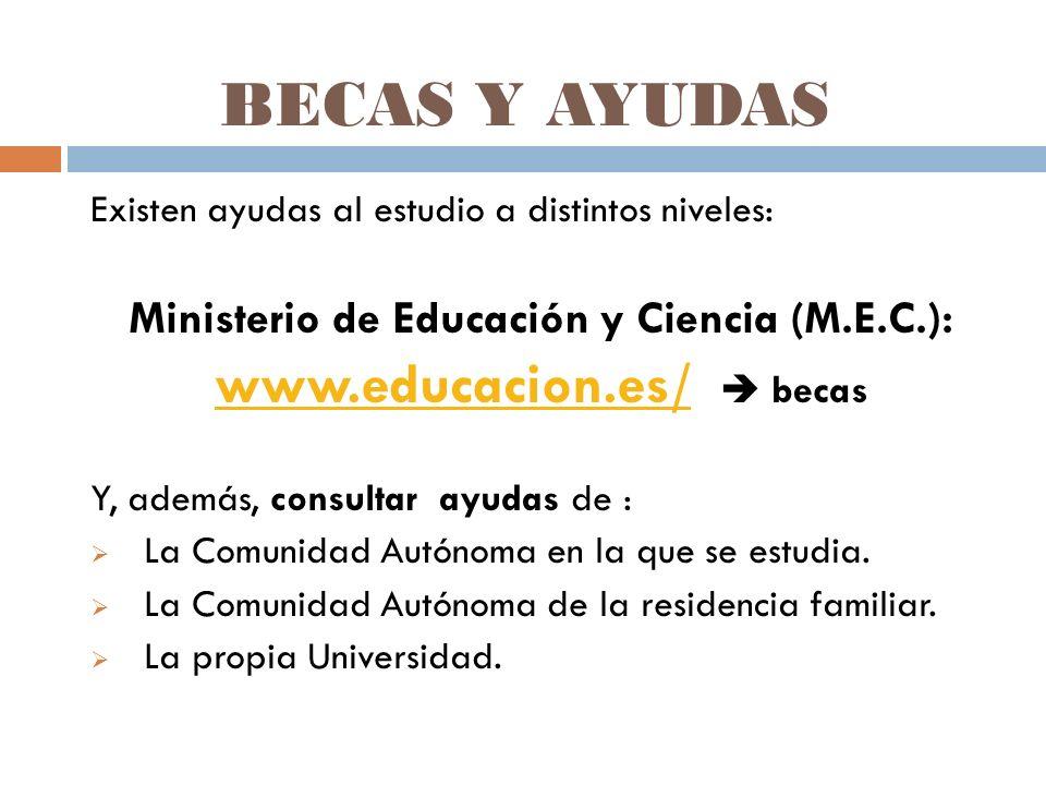 BECAS Y AYUDAS Existen ayudas al estudio a distintos niveles: Ministerio de Educación y Ciencia (M.E.C.): www.educacion.es/www.educacion.es/ becas Y, además, consultar ayudas de : La Comunidad Autónoma en la que se estudia.