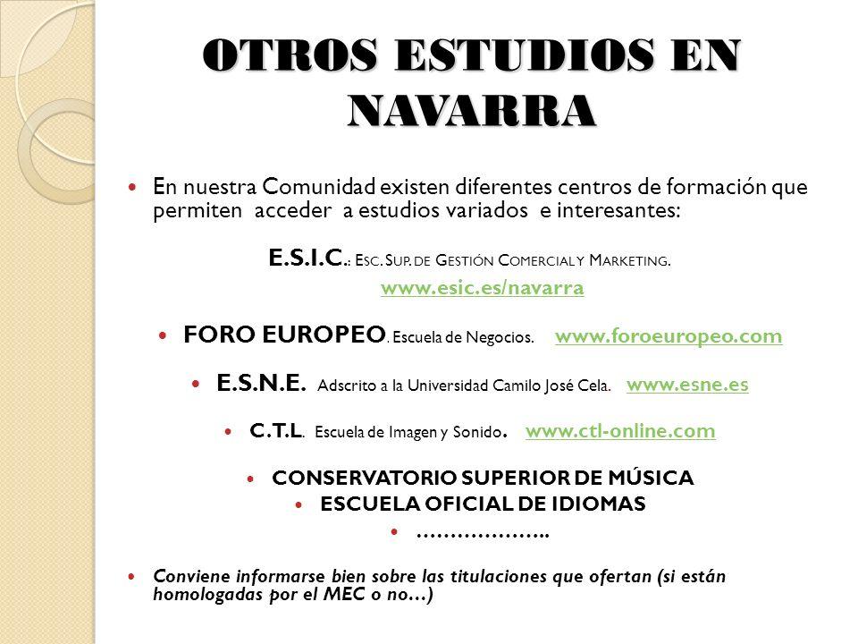 OTROS ESTUDIOS EN NAVARRA En nuestra Comunidad existen diferentes centros de formación que permiten acceder a estudios variados e interesantes: E.S.I.C.