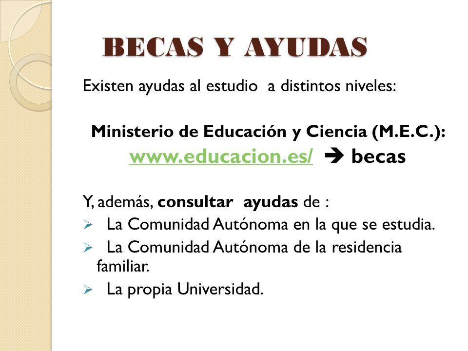 BECAS Y AYUDAS Existen ayudas al estudio a distintos niveles: Ministerio de Educación y Ciencia (M.E.C.): www.educacion.es/www.educacion.es/ becas Y,