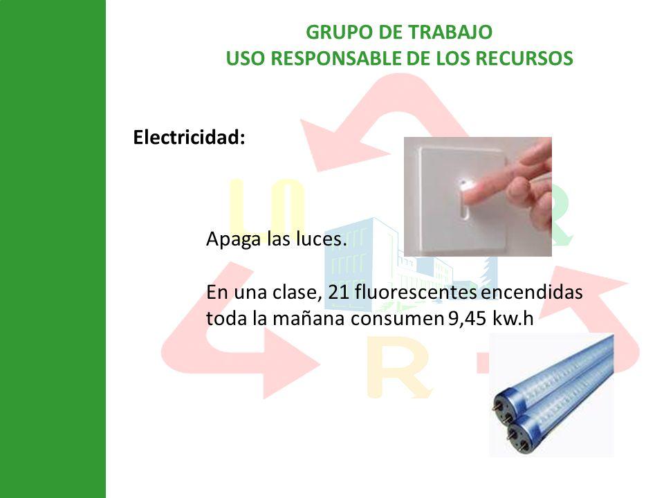 GRUPO DE TRABAJO USO RESPONSABLE DE LOS RECURSOS Electricidad: Apaga las luces. En una clase, 21 fluorescentes encendidas toda la mañana consumen 9,45