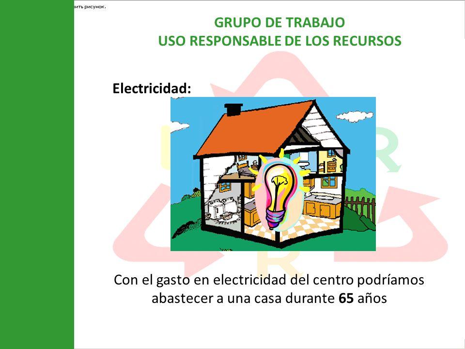 GRUPO DE TRABAJO USO RESPONSABLE DE LOS RECURSOS Electricidad: Con el gasto en electricidad del centro podríamos abastecer a una casa durante 65 años