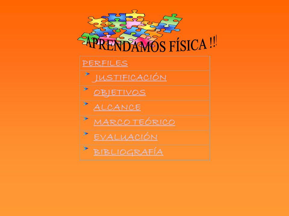 PERFILES JUSTIFICACIÓN OBJETIVOS ALCANCE MARCO TEÓRICO EVALUACIÓN BIBLIOGRAFÍA