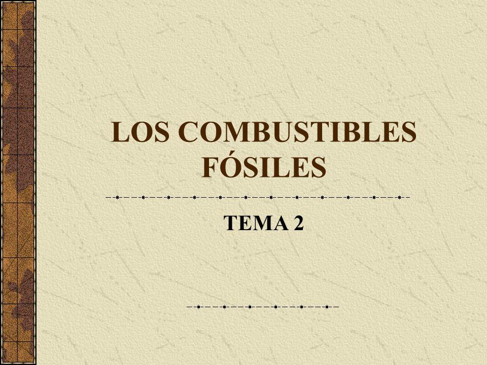 LOS COMBUSTIBLES FÓSILES TEMA 2
