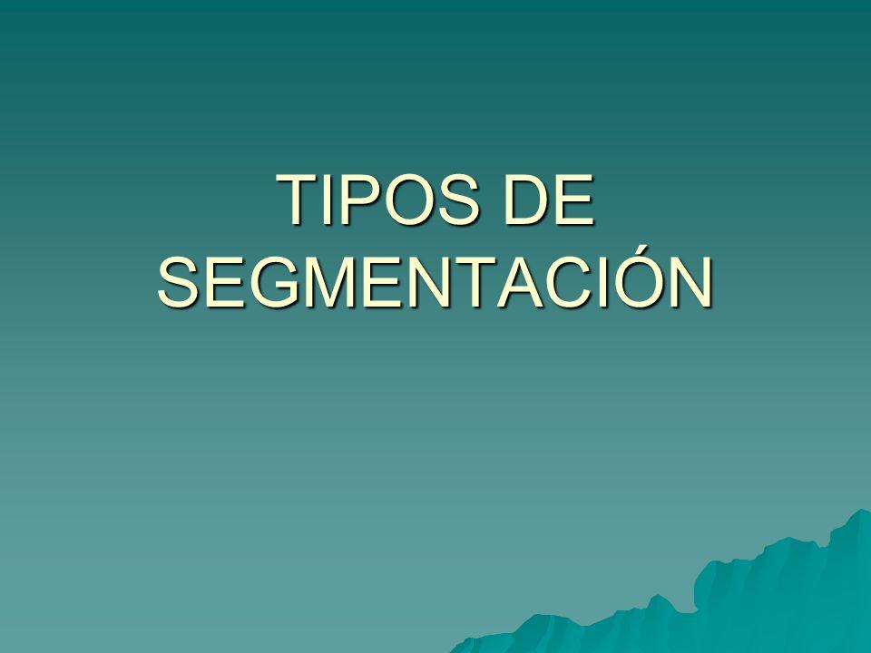 TIPOS DE SEGMENTACIÓN