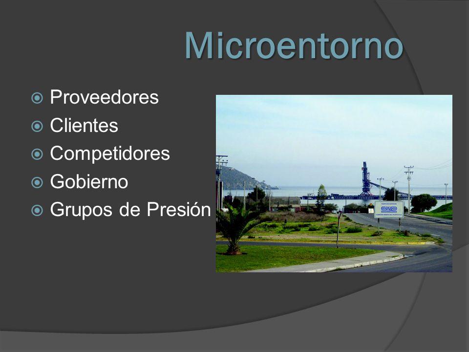 Microentorno Proveedores Clientes Competidores Gobierno Grupos de Presión